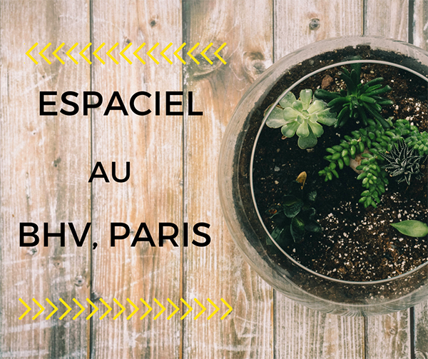 espaciel_au_bhv_paris