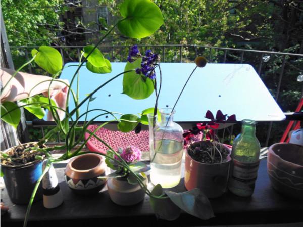 le réflecteur fenêtre devant la fenêtre de Stéphanie dans son appartement à New York pour éclairer naturellement son intérieur