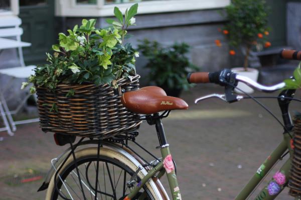 aller en vélo au travail pour bien débuter la rentrée