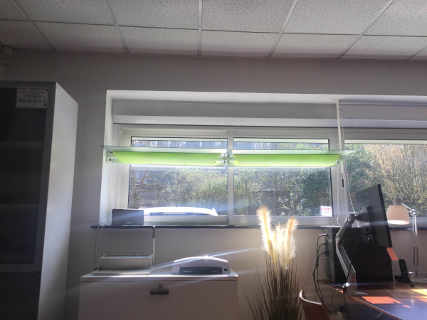 les bureaux sont exposés plein sud pour se protéger de l'éblouissement du soleil, les réflecteurs sont mis en place un éclairage naturel sans être ébloui